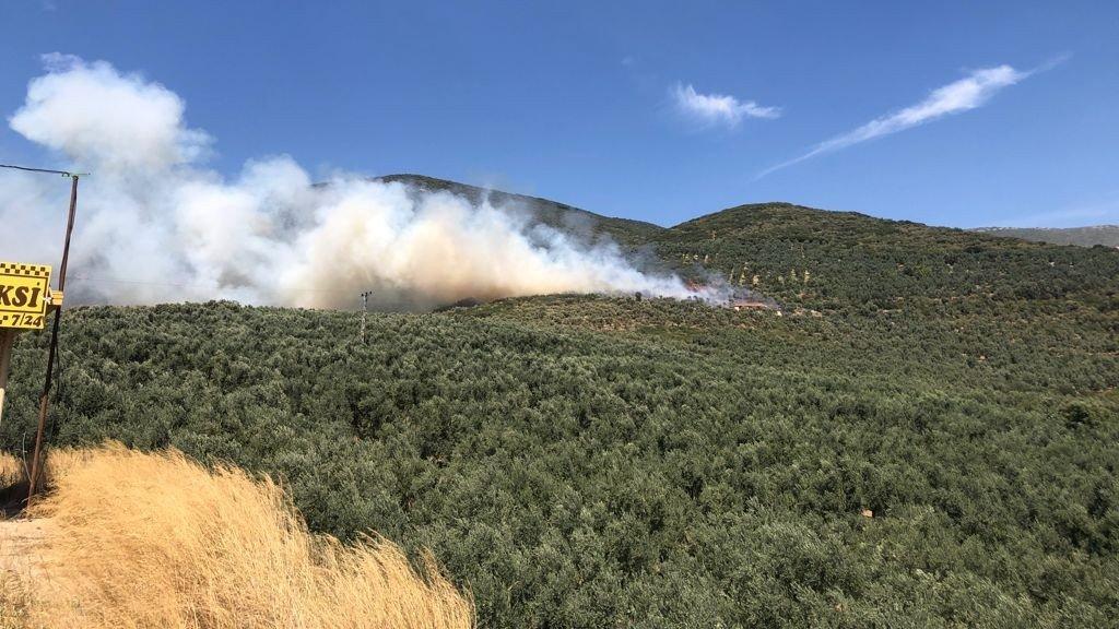 Bursa'da ormanlık alanda yangın