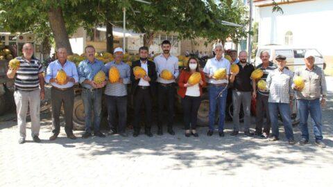 Denizli'de kavun üreticisi isyan etti: Tam sömürü düzeni