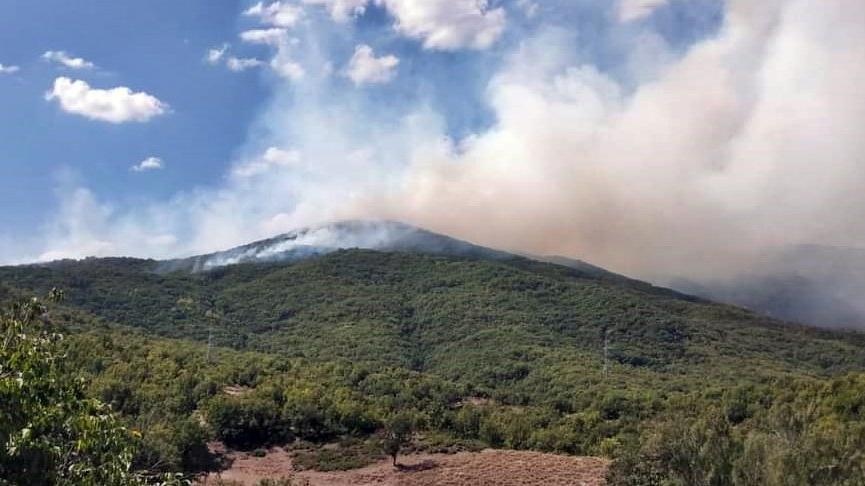 Tunceli'de yangın! Havadan müdahale ediliyor