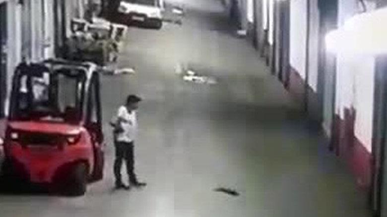 Sokak kedisini tekmeleyerek öldürdü, kedinin can çekişini film izler gibi izledi