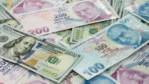 Fransız bankadan rezerv uyarısı: Biraz arttı ama hâlâ ekside