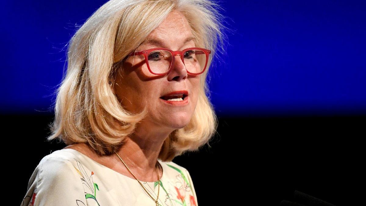 Hollanda Dışişleri Bakanı Kaag istifa etti