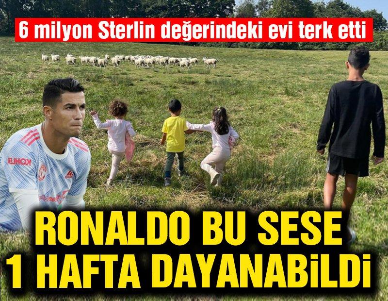 Koyunlar, Cristiano Ronaldo'yu 6 milyon Sterlin değerindeki evden etti!