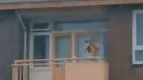 Hollanda'da oklu saldırı dehşeti