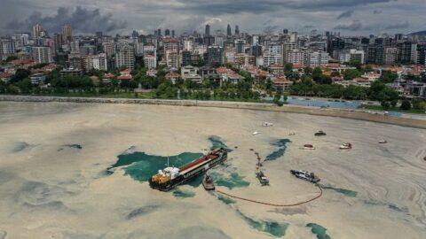 Avrupa medyası duyurdu: Marmara Denizi öldü... Ekim ayında müsilaj yeniden patlar