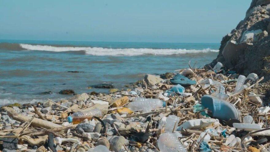 4 Karadeniz ülkesi kirlilikle mücadele başlattı: 500 metrekarede 2 bin 500 atık çıktı