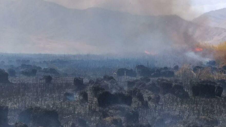 Doğunun kuş cenneti alev alev yanıyor