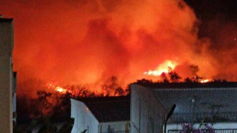 Bodrum'da korkutan yangın! Evler tahliye edildi
