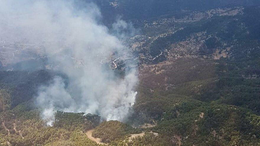 Manavgat'ta yeniden orman yangını