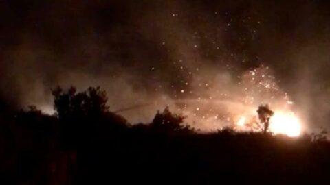 Mersin'de orman yangını: 10 dönüm alan ile 2 bahçe zarar gördü