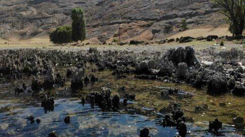 Van Gölü'nde su çekilince binlerce yıllık mikrobiyalitler görüntülendi