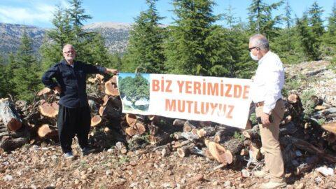Mersin'de ardıç ağaçlarına kıymayın eylemi