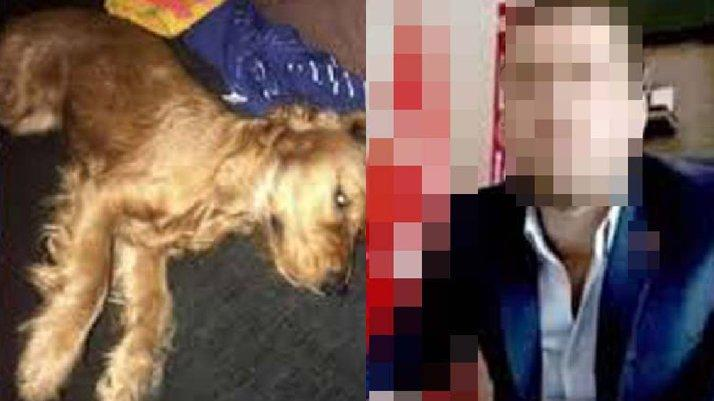 Köpeğe tecavüz ederek öldürme davasında yeni karar