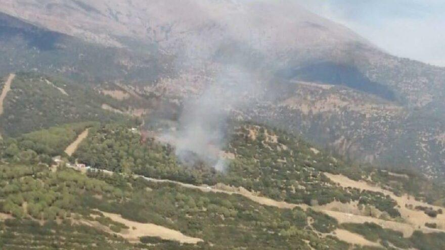 İzmir'in iki ilçesinde orman ve makilik yangını