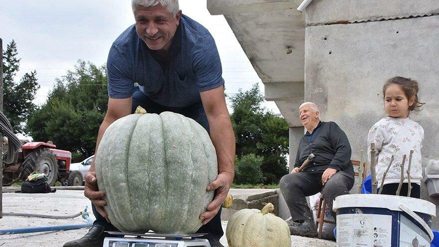 Bahçesinde 50 kiloluk kabak yetiştirdi! Sırrı gübresinde saklı