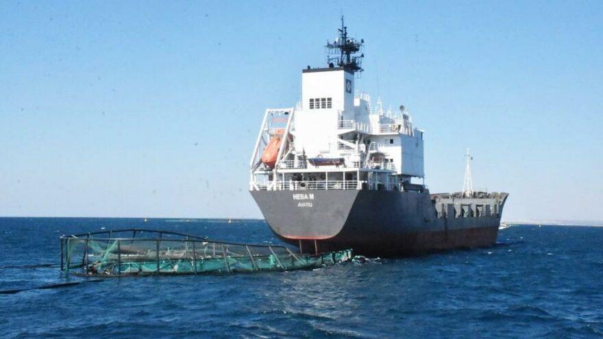 Kuru yük gemisi balık çiftliğine daldı 1 milyon balık denize kaçtı