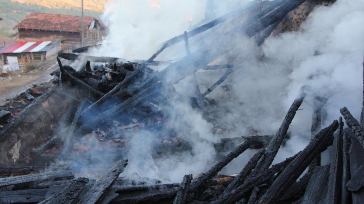 Kütahya'da ahır yangını; 3 hayvan öldü