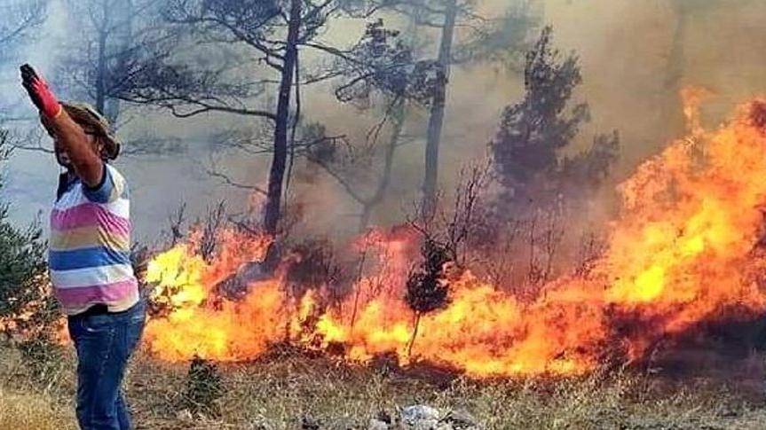 Sayıştay: Muğla orman yangınlarında ihmal var