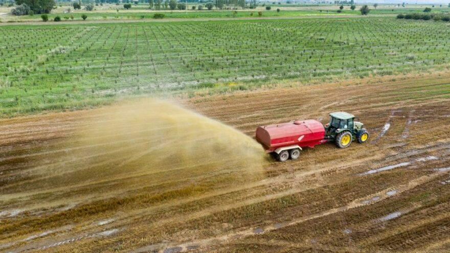Gübre zammı vurdu: Buğday yerine nohut, patates yerine fasulye ekilebilecek