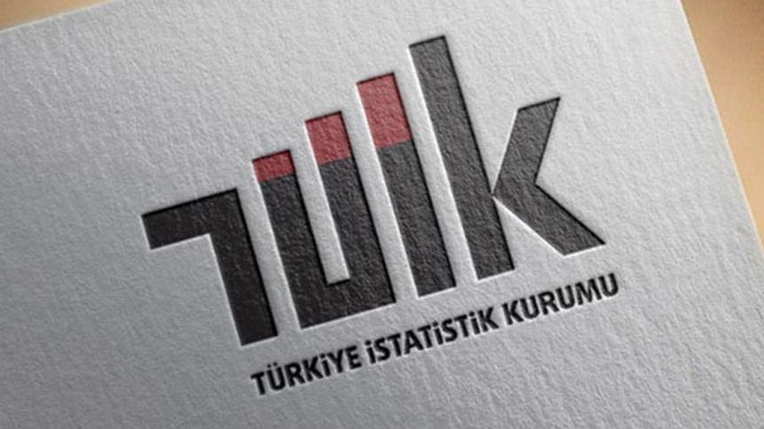 Erdoğan imzaladı, resmi istatistikte yapılanma yine değişti