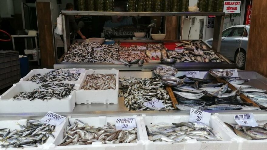 Denizde balık azaldı, fiyatlar arttı