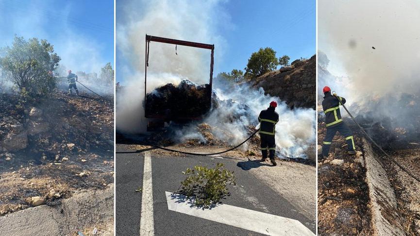 Seyir halindeki TIR'ın dorsesinde çıkan yangın ağaçlık alana sıçradı