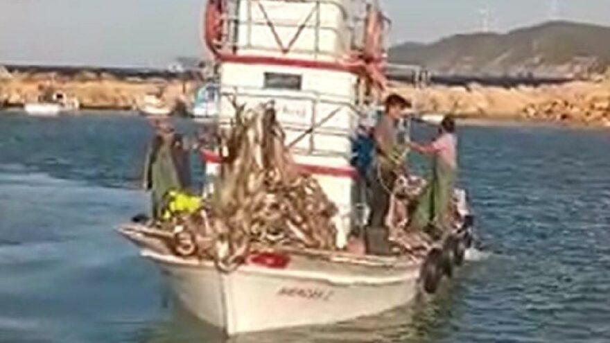 Yunusları takip ettiler, yakaladıkları balık sayısına kendileri bile inanamadılar