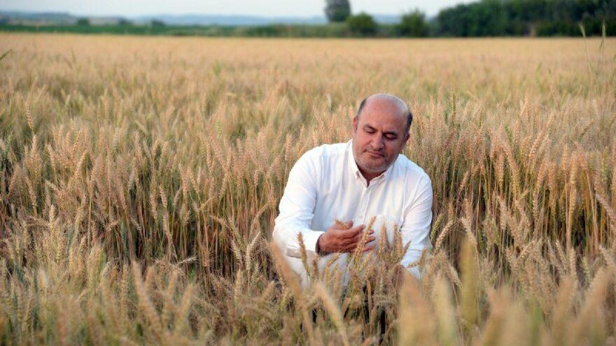 'Ankara ve İstanbul'un toplamından büyük tarım toprağını kaybettik'