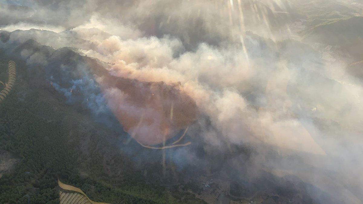 Muğla'da gece başlayan orman yangını kontrol altına alındı