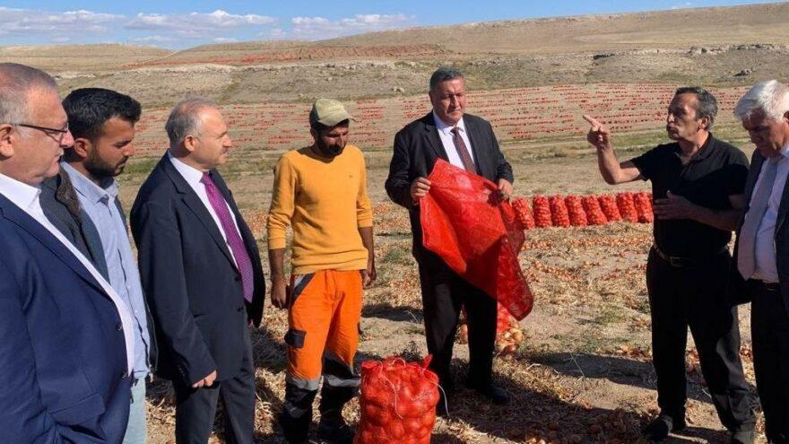 Tarım Kredi'ye soğan önerisi: TMO üreticiden alıp 2 liradan Tarım Kredi'de satsın