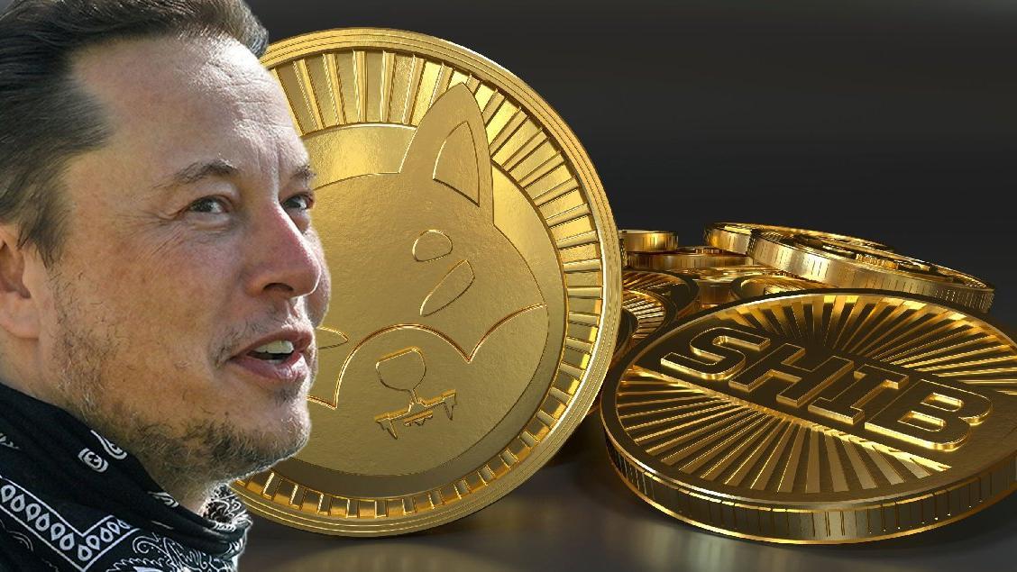 Elon Musk paylaşım yaptı, SHIB adlı kripto para rekor kırdı