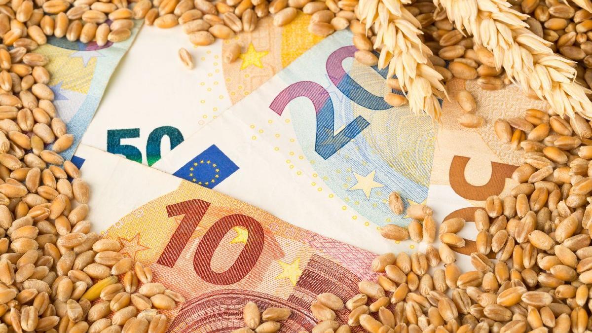 Küresel gıda fiyatlarında artış sürüyor