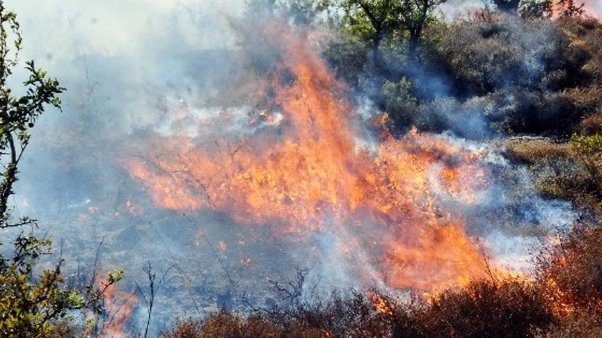 Yangın merayı kül etti, 5 koyun hayatını kaybetti