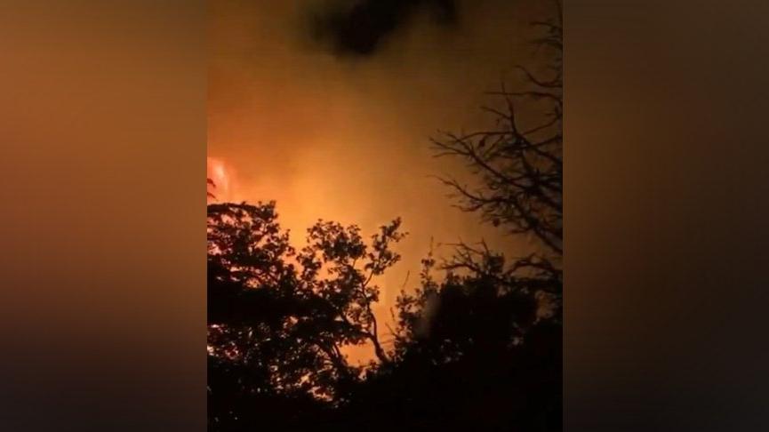 Kemer'de orman yangını! Geniş alana yayıldı