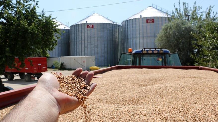 TMO'dan 325 bin tonluk mısır ithalatı