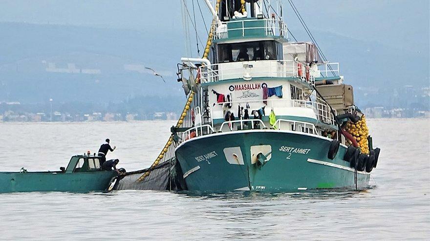 Saatler içinde 600 ton hamsi yakaladılar