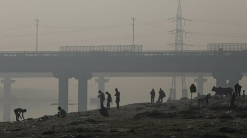 WMO: Sera gazları rekor seviyeye ulaştı